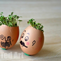 Spring Activities for Kids - Cress Heads
