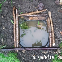 Make a mini garden pond