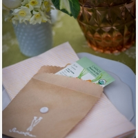 Seed pack favors button craft