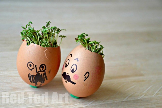 Spring Activities for Kids – Cress Heads