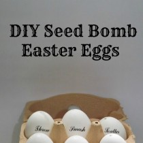Easter Gifts: Seed Bombs