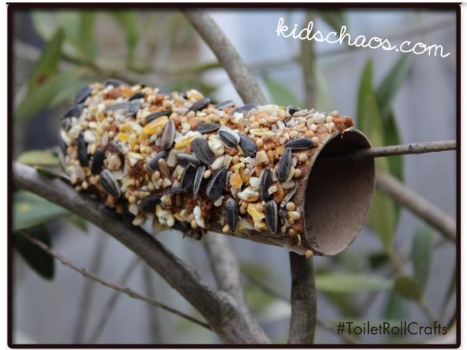 Toilet roll bird feeder