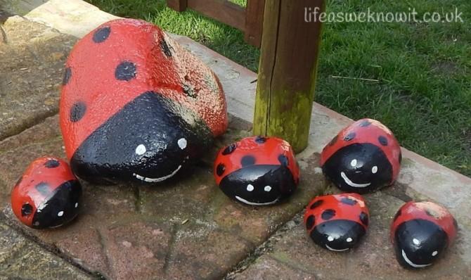 Stone ladybirds