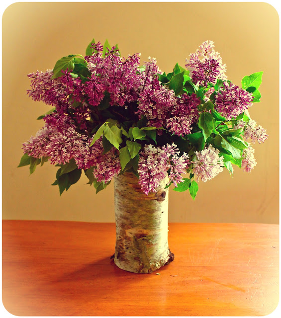 How to make a Birch bark vase