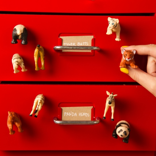 Zoo Magnets