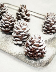 1-chocolate-pinecone-recipe-2