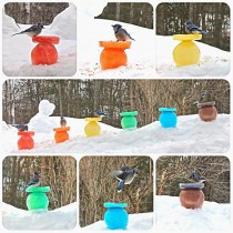 Rainbow Ice Bird Feeders