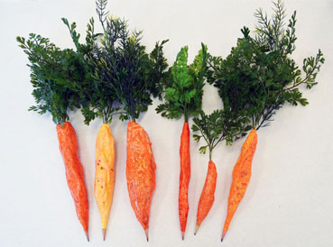 Papier Mache Carrot Pencils