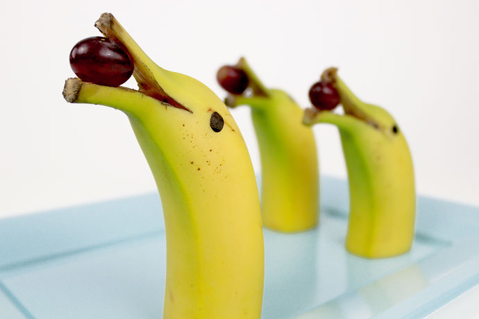 banana-dolphin-healthy treats