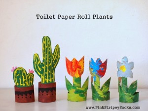 1 Toilet Paper Roll Cardboard Flowers and Cacti