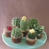 Cactus Cupcake – Oh my goodness!