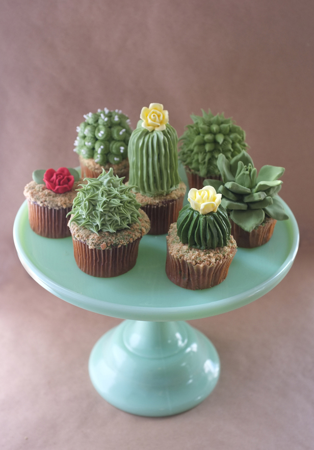 succulent and cactus cupcakes recipe