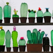 Plastic Bottle Cactus Inspiration by artist Veronik Richterova
