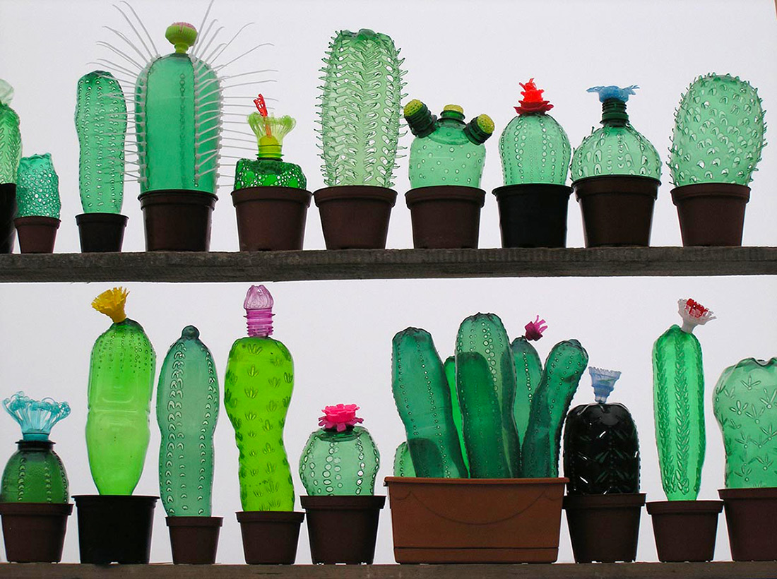 recycled bottle - Cactus crafts