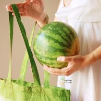 DIY Water Melon Bag
