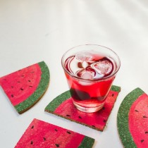 WaterMelon Coasters