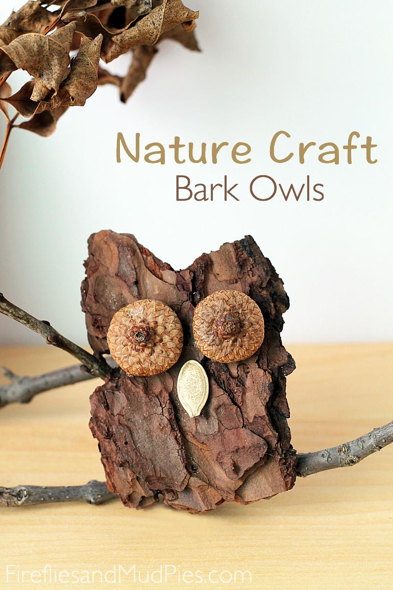 Bark Owls