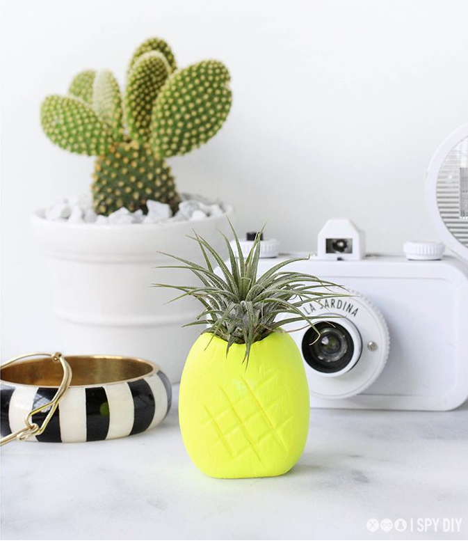 Your own DIY pineapple cactus