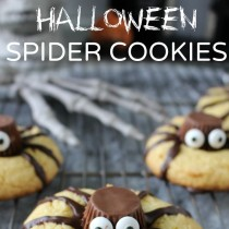 Adorable Halloween Spider Cookies