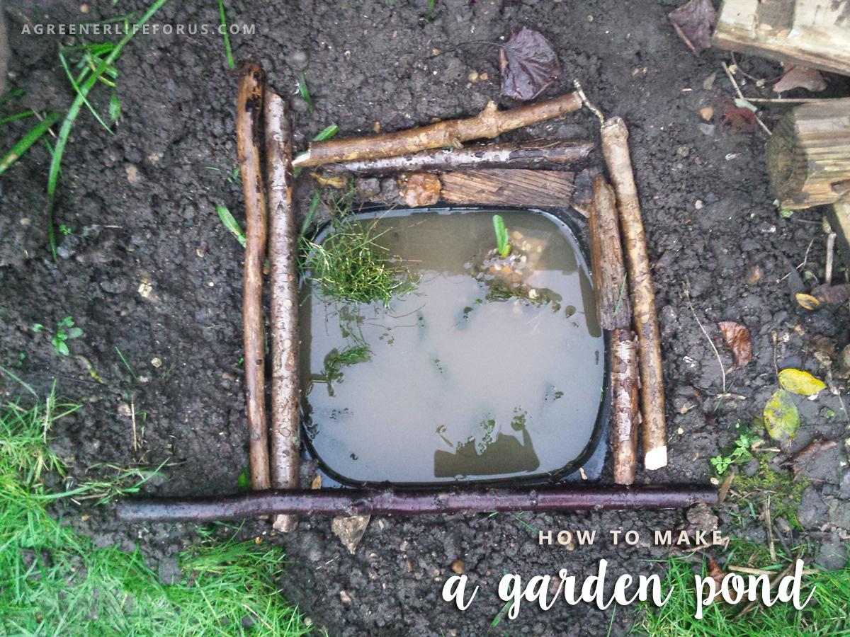 Make a mini garden pond fun crafts kids for Mini garden pond