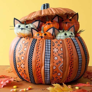 Kitty Pumpkin DIY