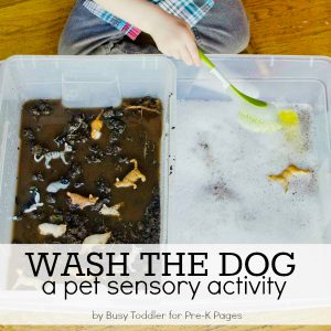 Wash a pet dog toddler