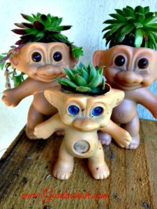 Troll succulent plant pot